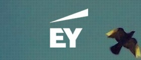 Case Study| EY | Senior Strategy Manager