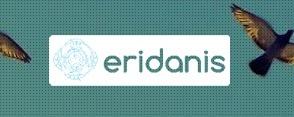 Case Study | Eridanis | Senior Consultant