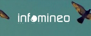 Case Study | Infomineo | General Manager, Egypt
