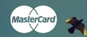 Case Study | MasterCard Advisors | Managing Consultant