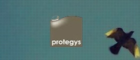 Case study | Protegys | Chief of Staff of CEO