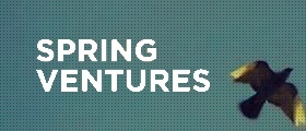 Case Study| Spring Ventures | Investment analyst