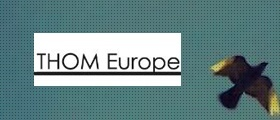 Case Study | THOM Europe | Strategy Director