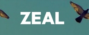 Case Study| Zeal Network | EA to CEO