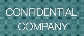 Case Study | Confidential | Freelance Consultant