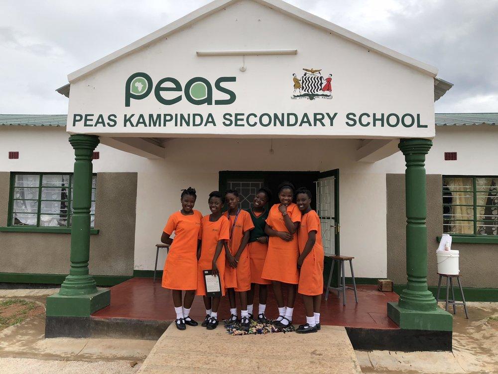 PEAS consultants against covid