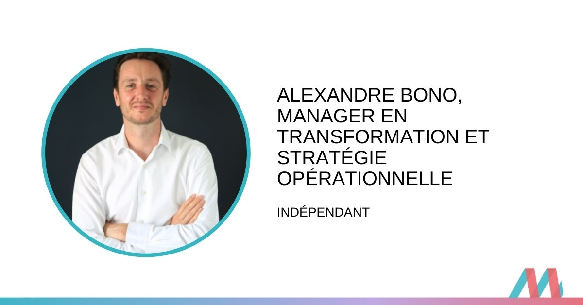 Conversation avec un consultant Pro Bono : Alexandre Bono